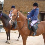 How to Enter Cross-Country Schooling in Horse Riding