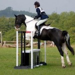 How to Participate in Eventing and Hunter Trials