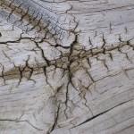 How to Repair Holes and Cracks in Wood