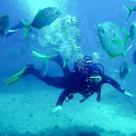 How to Become a Deep Sea Diver