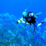 How to Plan a Diving Trip