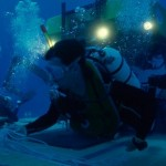 How to Examine Underwater Creatures While Scuba Diving