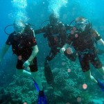 How to Build a Healthy Lifestyle as a Scuba Diver