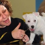 How to Take Care a Deaf Dog