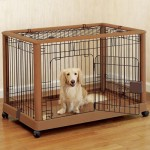 How to Teach your Dog not to Pee in his Crate