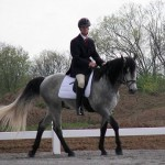 How to Train a Gaited Horse
