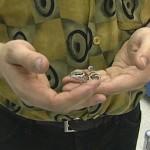 How to Discipline a Pet Lizard