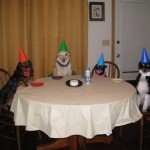 How to Host the Ultimate Dog Party