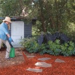 How to Do Mulching in Organic Gardens