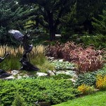 How to Winterize your Perennial Plants