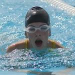 How to Swim with Piranhas in a Safe Way