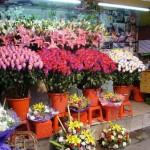 How to Start a Flower Shop